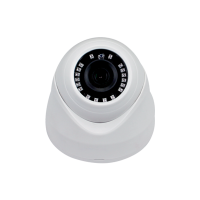 CAMERA DOME EL-2232 2MP IP66